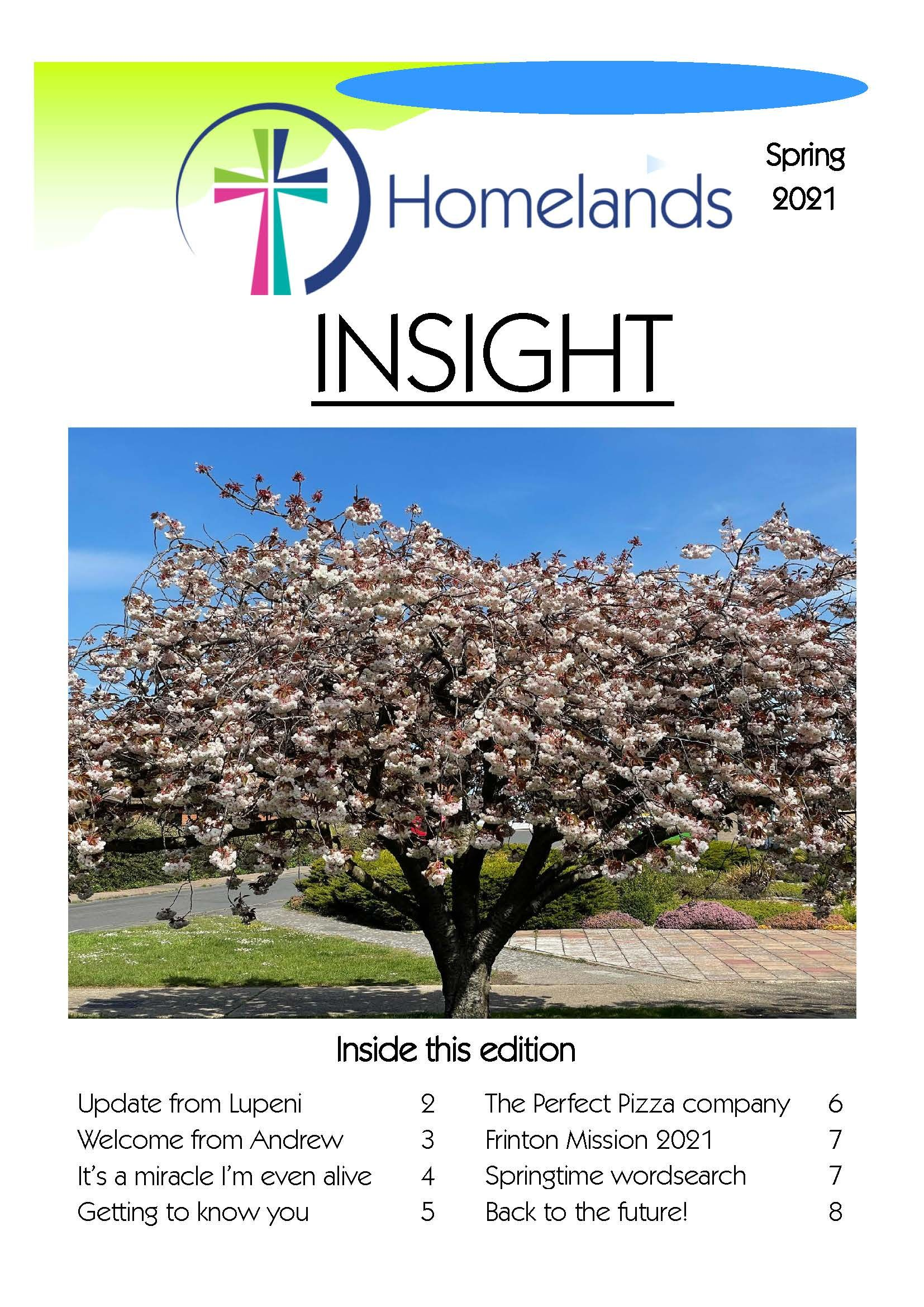 Insight Spring 2021 cover