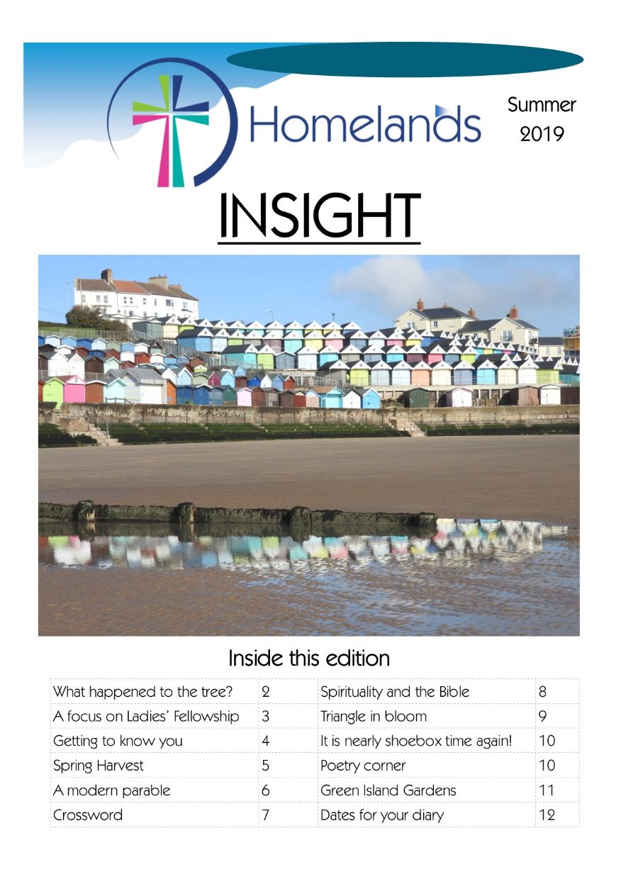 Insight 19 issue 2 cover
