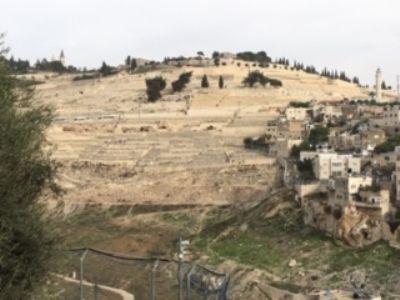Mount of Olives, Jerusalem.  Photo taken during Holy Land Pilgrimage 29th Nov 2018