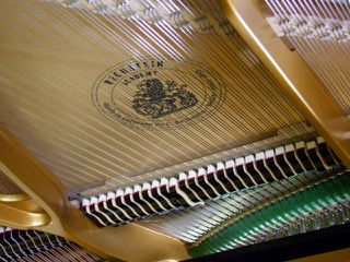 13th Photograph of the Grand Piano