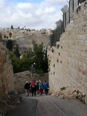 40 Photo 4 - taken during Holy Land Pilgrimage 1st December 2018