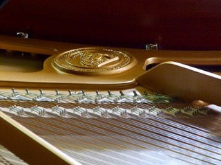 12th Photograph of the Grand Piano