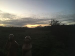 Mary and Joseph figures in shillouette with sun set behind them
