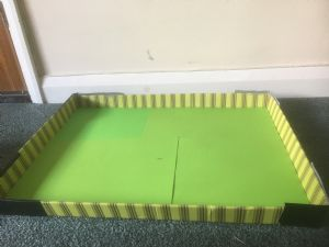tray with green paper in it