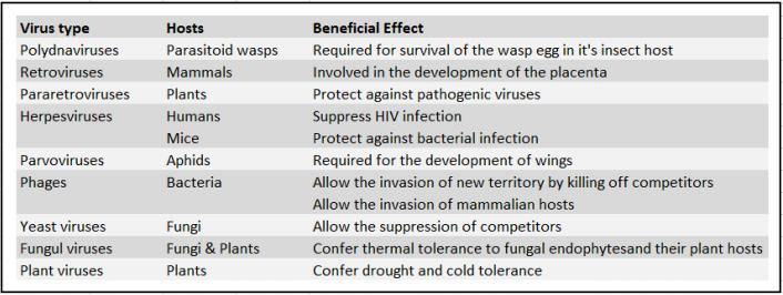 Examples of good viruses