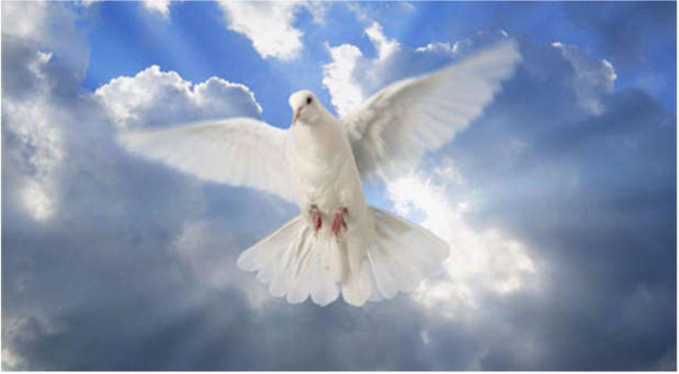 he saw the Spirit of God descending like a dove