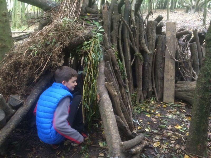 shelter building 4