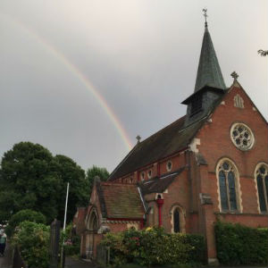 AllSaints rainbow