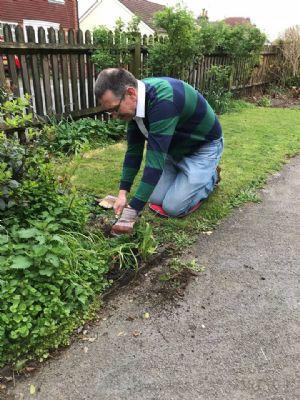 Dave gardening