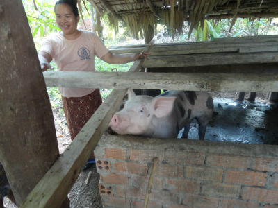 woman and pig