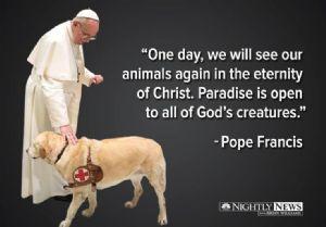 Pope Francis & Animals