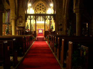 christmas tree festival 2008