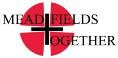 mesd fileds logo