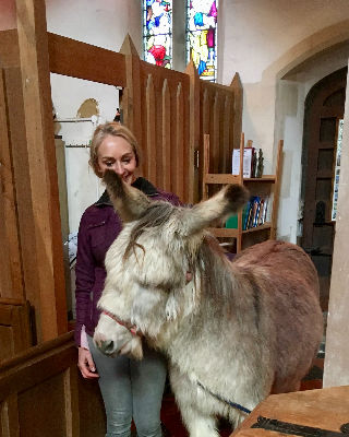 Dougal the donkey in church by the font