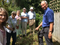 Eco Group planting wildflower patch in church grounds