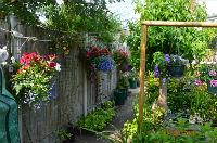 The Lancasters Garden
