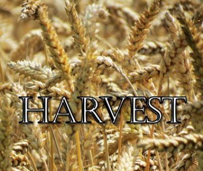 Harvest Talk 2019