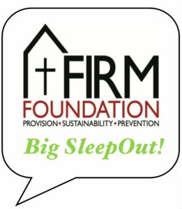 logo of the big sleep out