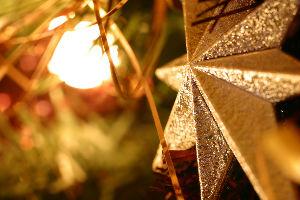 christmas star and tree light