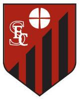 SquareFC logo4
