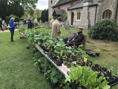 Stall at 2018 plant sale