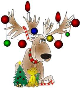 Chritmas deer