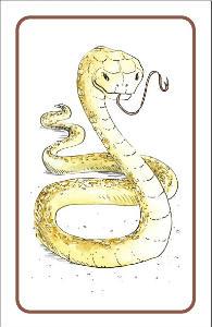 serpent from Garden of Eden