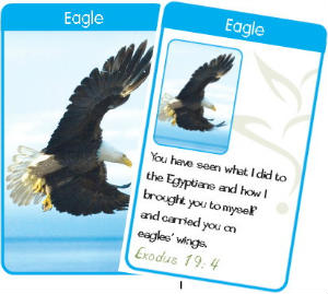 I will carry you on eagles wings