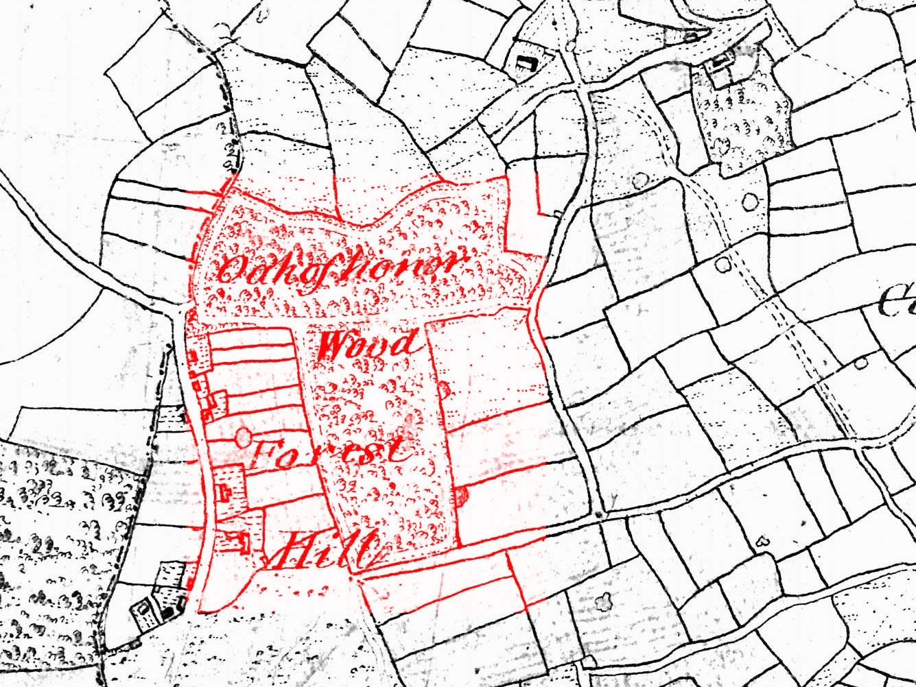 Close-up of map showing Oak of Honor Wood and a few houses on the site of the Centre, labelled Forest Hill.