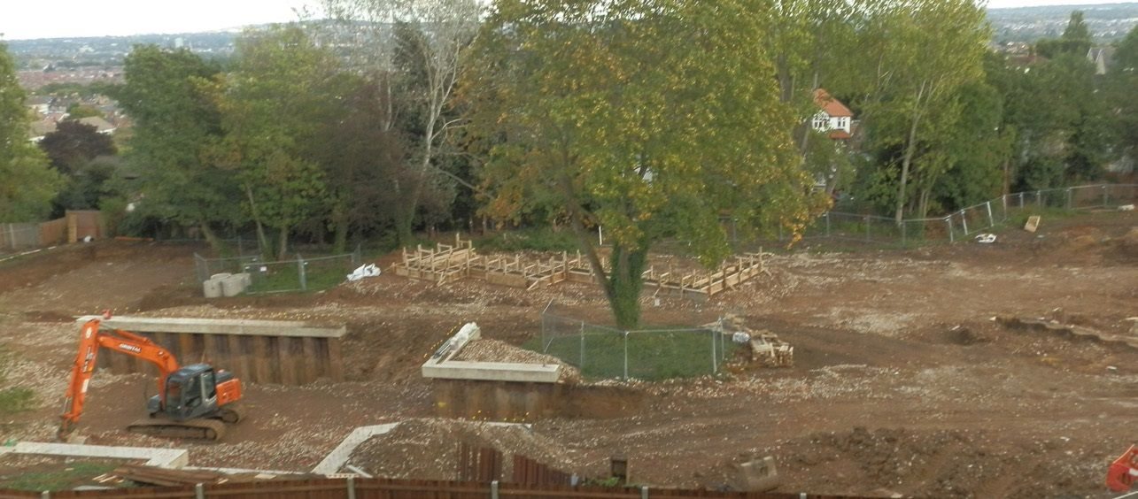 Tree surrounded by earth, foundations starting to take shape