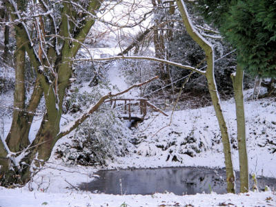 pond snow