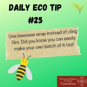 Daily Eco Tip 25