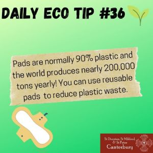 Daily Eco Tip 36