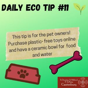 Daily Eco Tip 11