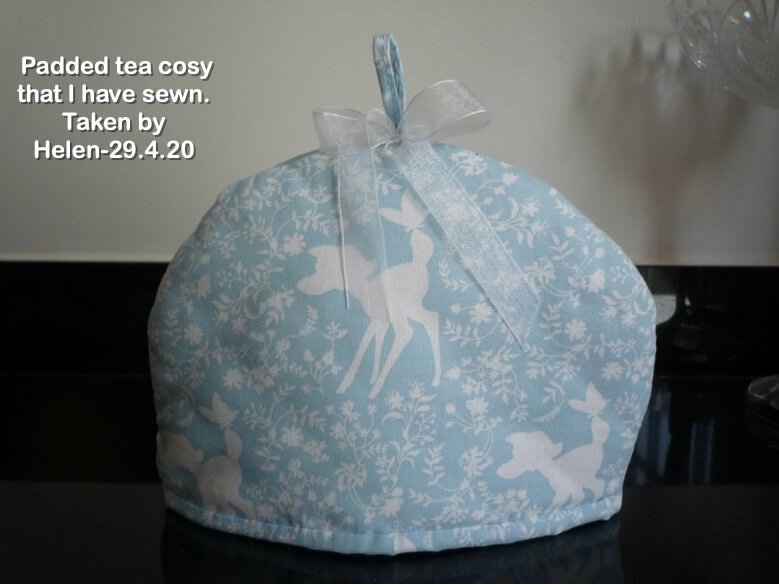 Padded tea cosy that I have sewn.