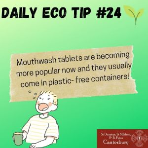 Daily Eco Tip 24