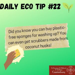 Daily Eco Tip 22