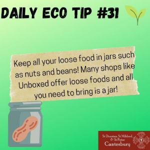 Daily Eco Tip 31