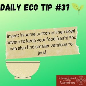 Daily Eco Tip 37