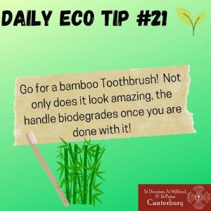 Daily Eco Tip 21