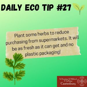 Daily Eco Tip 27
