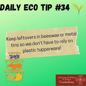 Daily Eco Tip 34