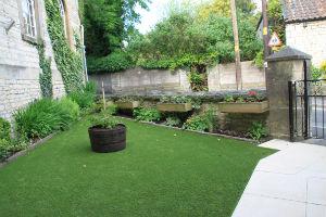 Cellar Garden 2