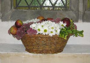 harvest Flowers 9