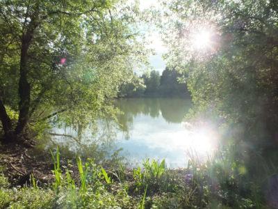 Hauxton Reserve 3