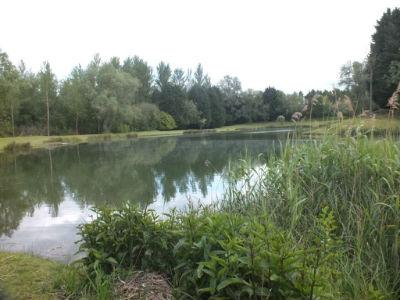 Hauxton Reserve 1