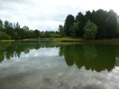 Hauxton Reserve 9