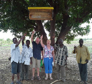 Malawi First Bee Hive Up 25 Dec 2013
