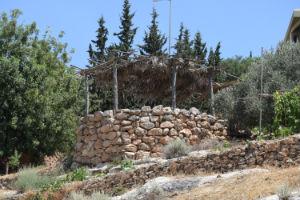 Watch Tower (Nazareth Village)