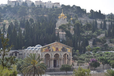 The Church of The Agony more commonly called the Church of All Nations